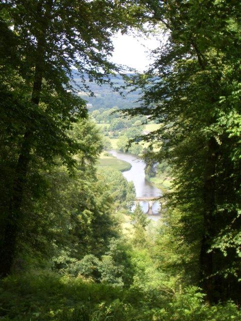 The Primrose Trust river